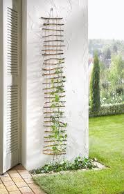 30 diy trellis ideas for your beautiful garden