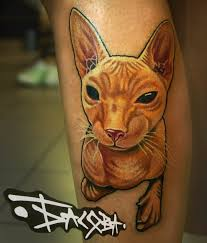 кошка сфинкс тату на голени у девушки добавлено анастасия басова