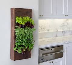 Vertical Kitchen Garden 15 Phenomenal Indoor Herb Gardens