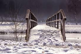 Images Gratuites : la nature, neige, hiver, bois, pont, gel, Web, la glace, balustrade, Météo, saison, transition, blizzard, un moyen, tempête hivernale 5495x3663 - - 604386 - Banque d image gratuite - PxHere