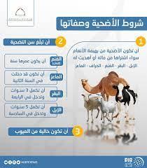 """وكالة أنباء الإمارات on Twitter: """"شروط الأضحية وصفاتها #عيد_الاضحى #وام… """""""