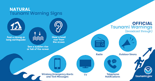 The pacific tsunami warning center and the ioc sprang into action as well. Is A Tsunami Coming Or Not Understanding The Tsunami Warning System Surfline