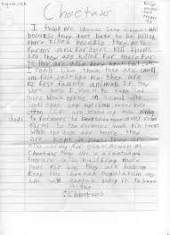 cheetah essay contest why should we save cheetahs cheetah erin mcgeehan 2
