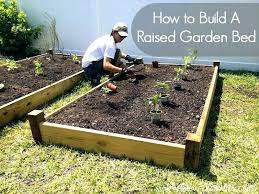 how to build a raised vegetable garden how to build raised vegetable garden beds making raised beds for vegetable garden stunning making a building a raised