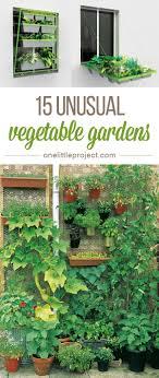 Balcony Kitchen Garden 15 Unusual Vegetable Garden Ideas