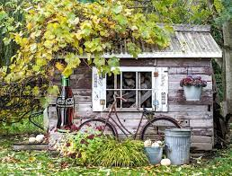 the rustic garden shed during fall