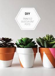 Succulent Pot Design Diy Painted Succulent Pots Wild Little Flowers