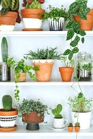 large clay plant pots clay garden pots 5 easy ways to give a terracotta plant pot large clay plant pots