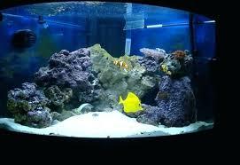 r aquarium lighting led reef