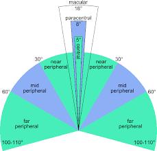 Peripheral Awareness Chart Peripheral Awareness