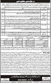 govt jobs in elementary secondary education dept bannu kpk new job opportunities in elementary secondary education department bannu