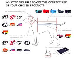 Polar Size Chart Durable Heavy Duty Dog Collar Polar Collar Non Stop