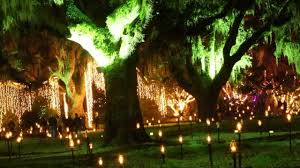 Brookgreen Summer Lights Festival Christmas Myrtlewood Villas