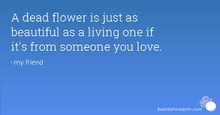 Dead Beautiful Quotes Best of A Dead Flower Is Just As Beautiful As A Living One If It's From