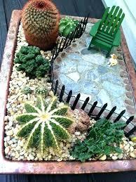 indoor cactus garden indoor cactus garden cactus garden ideas best cactus garden ideas ideas on outdoor indoor cactus garden