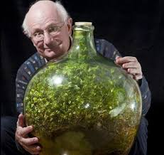 plants sealed inside a large glass jug a half century ago are self sustained inside a perfect ecosystem is there a message in this bottle for the parched