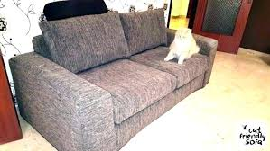 best couch for dog owners best couch for dog owners luxury best couch material for cat