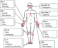 Leg Acupressure Points Chart Acupuncture Points Hand Out The Figure Illustrates The