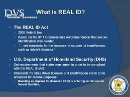 Public gt; Of Department Minnesota - Drivers Licenses Safety Summary