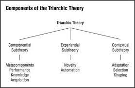 Sternberg Intelligence Triarchic Theory Measuring Intelligence