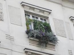 9 Tipps Für Den Diy Mini Garten Vor Dem Fenster Teil 1 Hofdame