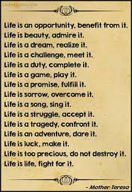 Mother Teresa Quotes Life Is A Dream Realize It