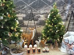 Celebrate christmas in style | The Garden of Eden Nursery