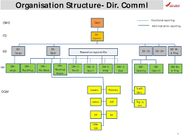 British Airways Organisational Chart Organisation Structure Air India Airline Business Pdf