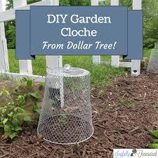 garden cloche dollar diy how to