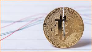 Blockchain info bitcoin block explorer. The Value Of Bitcoin Blocks Just Halved Information Age Acs