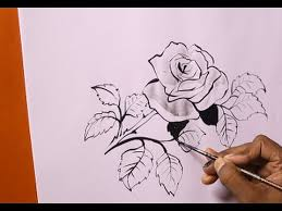 Easy To Draw Roses 50 Easy Ways To Draw A Rose Learn How To Draw A Rose