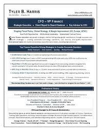 Financial Resume Examples Mesmerizing Vp Finance Resume Examples Free Professional Resume Templates