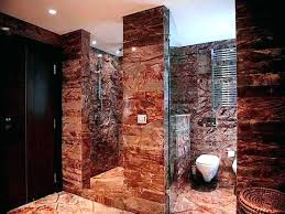 bathroom design ideas walk in shower. Contemporary Walk Bathroom Remodel Ideas Walk In Shower Designs Small   Throughout Bathroom Design Ideas Walk In Shower S