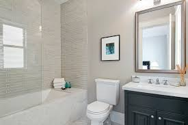 guest bathroom shower ideas. Guest Bathroom Traditional-bathroom Shower Ideas S