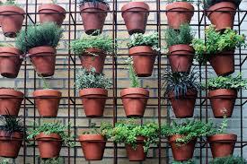 urban gardening archives green urban