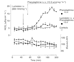 Intracerebroventricular I C V Infusion Of Phenylephrine