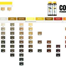 Redken Shades Color Chart 16 Interpretive Redken Hair Toner Color Chart