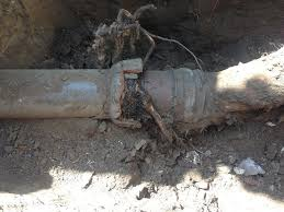 sewer pipe repairs or pipe replacement find a plumber