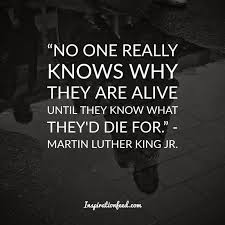 Martin Luther King Jr Quotes On Courage Gorgeous 48 Martin Luther King Jr Quotes On Courage And Equality
