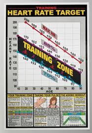 Exercise Heart Rate Chart For Kids Heart Rate Chart Workout Posters Target Heart Rate Cardio