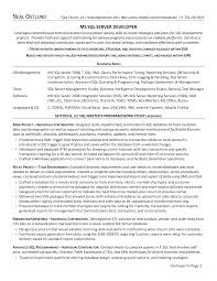 Ssrs Resume Samples Download Ssrs Resume Samples DiplomaticRegatta 4