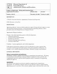 Affirmative Action Plan Affirmative Action Plan Template For Small Business Hiring Plan 10