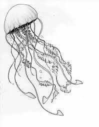 jellyfish drawing easy. Exellent Drawing And In Color Rhus Youtuberhyoutubecom Jellyfish Drawing  Easy Simple At Getscom Free For Personal Use In Jellyfish Drawing Easy F
