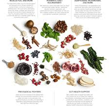 Shakeology Ingredient Chart Shop Shakeology Your Daily Dose Of Dense Nutrition Team