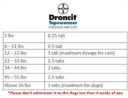 Drontal Feline Dosage Chart Dewormer Comparison Droncit To Drontal Plus To Revolution