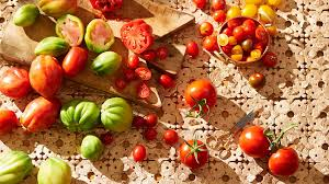 Tomato Seed Growth Chart How To Grow Tomatoes Sbs Food