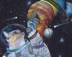 Space Cat Drawing by Wendy Berry