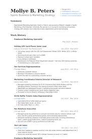 Sales Lead Resume Samples Visualcv Resume Samples Database
