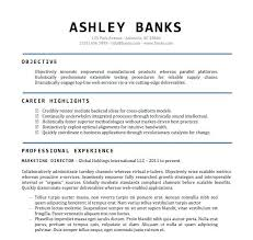 Resume Example Word Document