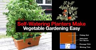 how 5 self watering planters make vegetable gardening easy